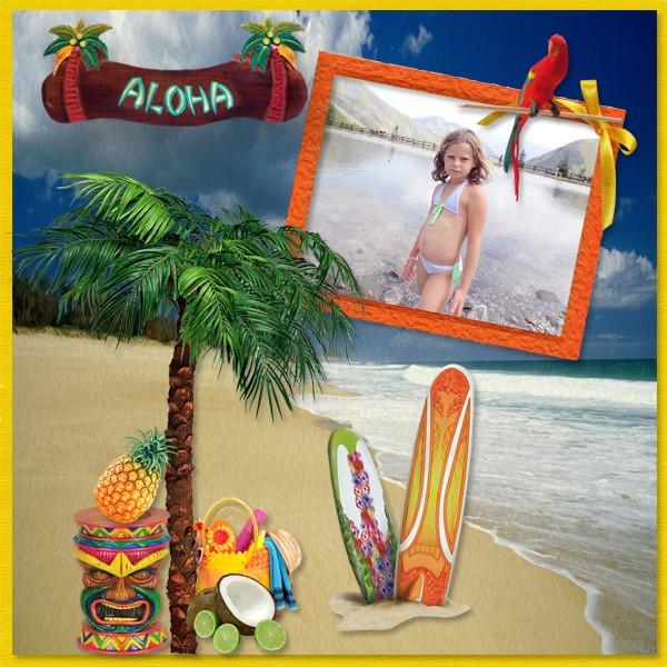 http://i56.servimg.com/u/f56/10/08/05/77/hawaii10.jpg