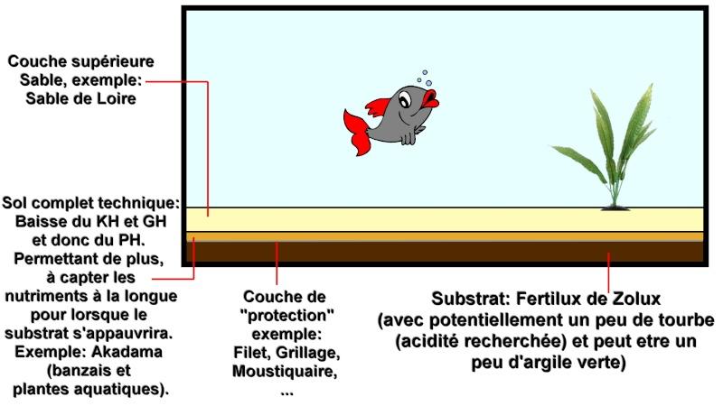Composition du meilleur choix de sol pour les plantes d'un aquarium