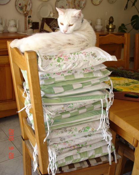 Yahoo, chat chez Brigitte