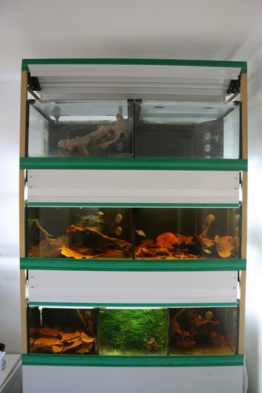 nouvelle batterie d aquarium