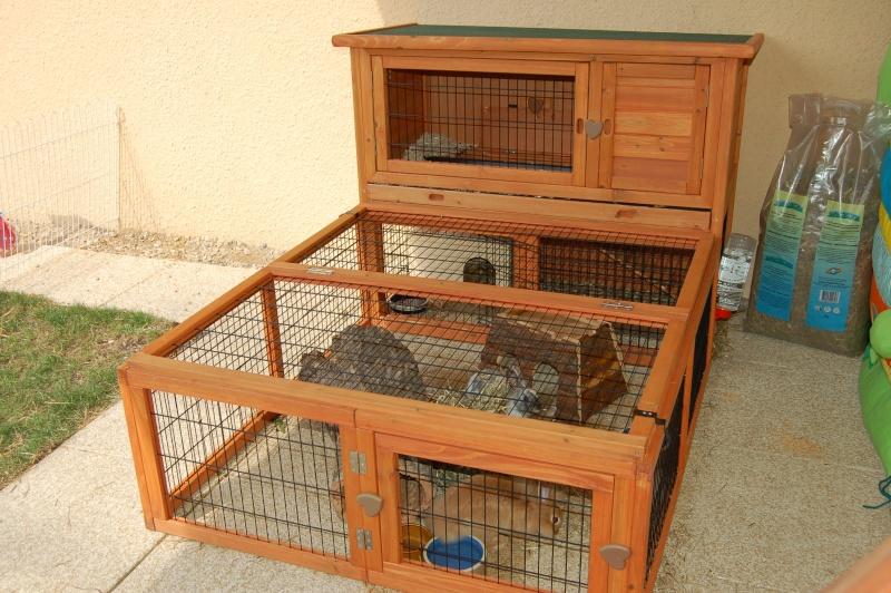 Enclos exterieur lapin for Enclos exterieur pour lapin