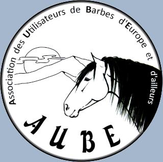 A l'AUBE du cheval barbe
