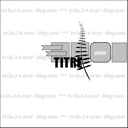 http://i56.servimg.com/u/f56/11/69/25/69/9_0110.jpg