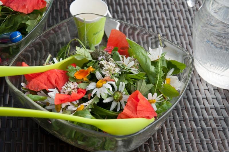 Cuisine de plantes sauvages - Cuisine plantes sauvages ...