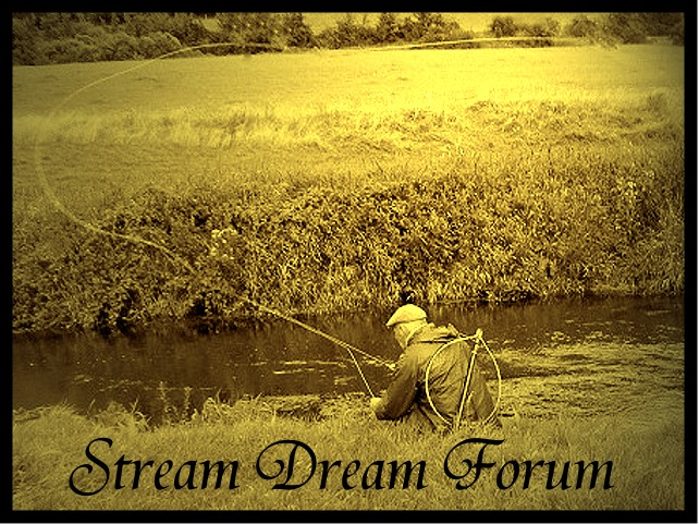 La Passion de la Truite de Mer    STREAM DREAM FORUM