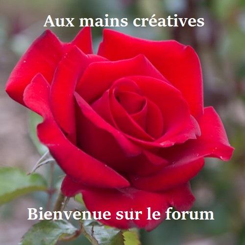 rosier10.jpg