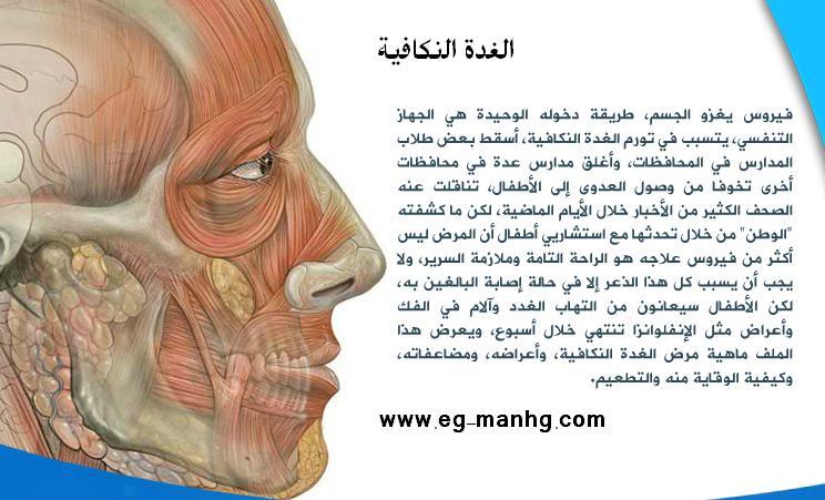 شامل الغدة النكافية العدوى والاعراض والمضاعفات والعلاج والوقاية