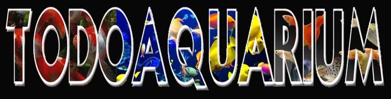 Todo Aquarium