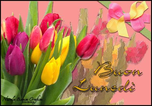 Lunedi 3 febbraio salutiamoci in questa sezione pagina 1 for Immagini buon lunedi amici