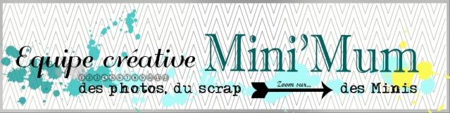http://minimumdescrap.blogspot.fr/