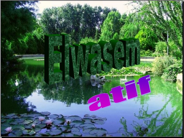 elwasem