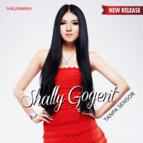 Shally Gogent - Lebih Sempurna