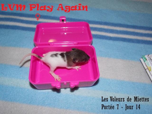 play_a10.jpg