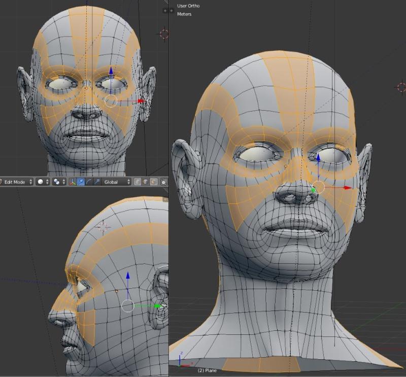 face_l10.jpg