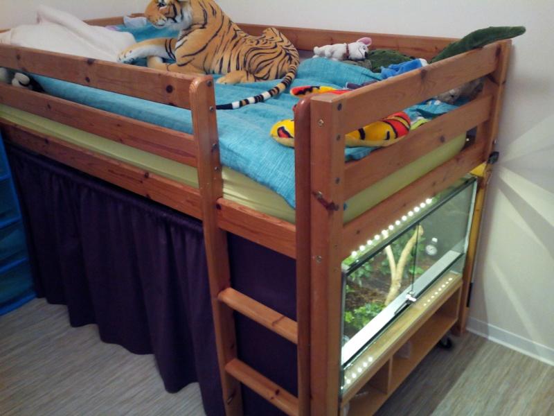 Terrarium pour elaphe sous le lit - Terrarium meuble ...