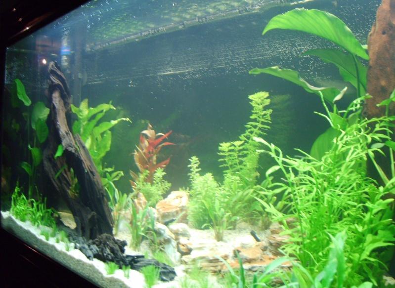 Aquarium Aquatlantis vu de droite