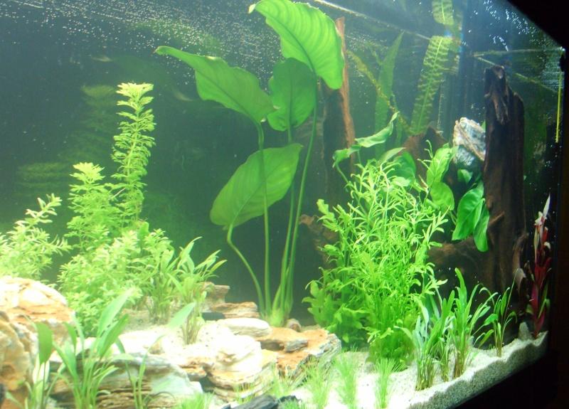 Aquarium Aquatlantis vu du coté droit