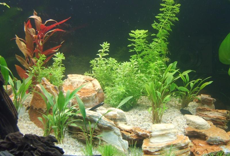 Aquarium Aquatlantis vu de face