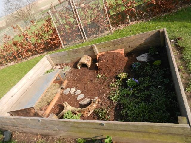 Mon enclos for Amenagement jardin pour tortue