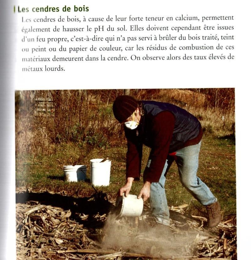 Utilisation de la cendre au jardin for Cendre de bois au jardin