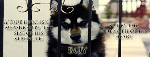 boy--13.png
