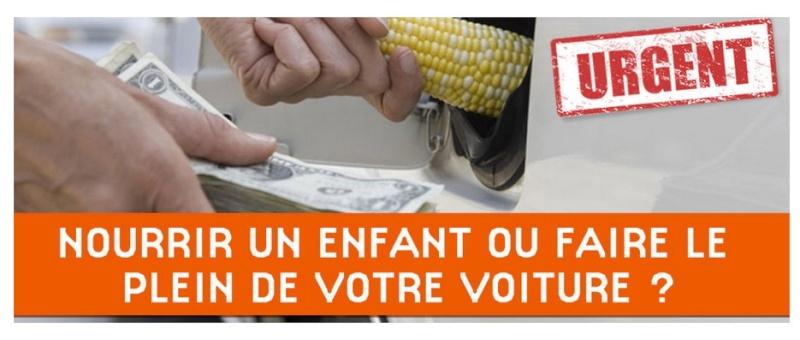 Agrocarburants: l'imposture. - Actualité auto