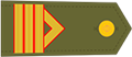 Sargento 1º E.T