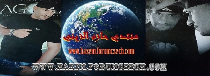 www.hazemelzeini.com