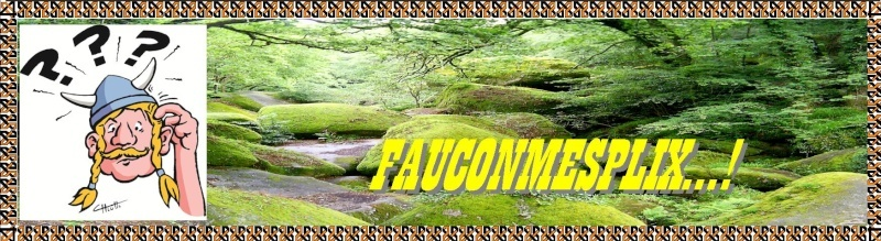 FAUCONMESPLIX...