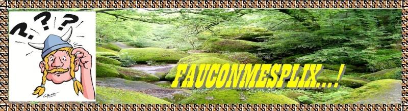 FAUCONMESPLIX...