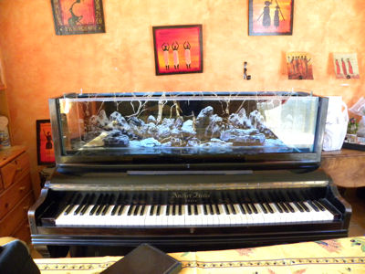 aquarium dans un piano droit page 2. Black Bedroom Furniture Sets. Home Design Ideas