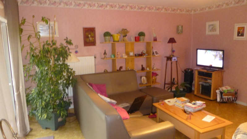 quel couleur pour une chambre adulte avec mur penche avec velux. Black Bedroom Furniture Sets. Home Design Ideas